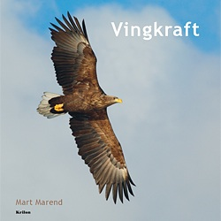 Vingkraft